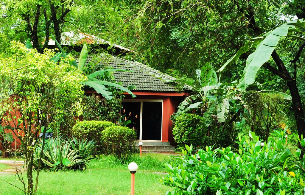 Farmstays with swimming pool top facilites in goa check - Guest house in goa with swimming pool ...